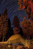A Tent and Pine Trees Against a Backdrop of Star Trails Photographic Print