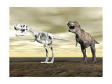 Comparison of Tyrannosaurus Rex Standing Next to its Fossil Skeleton Posters