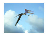 Zhejiangopterus, a Genus of Azhdarchid Pterosaur Posters