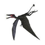 Dorygnathus, a Genus of Pterosaur from the Jurassic Period Poster
