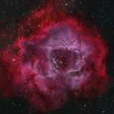 The Rosette Nebula Fotografisk trykk