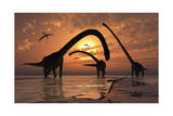 A Herd of Omeisaurus Sauropod Dinosaurs in Shallow Water Prints
