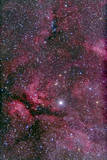 Sadr Region of Cygnus around Gamma Cygni Photographic Print
