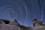 A Boulder Outcropping and Star Trails in Anza Borrego Desert State Park, California Photographic Print