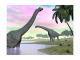 Two Brachiosaurus Dinosaurs in Landscape with Water and Palm Trees Prints