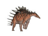 Kentrosaurus Dinosaur, White Background Prints