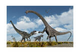 A Pair of Allosaurus Dinosaurs Confront a Giant Diplodocus Art