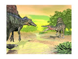 Confrontation Between Two Spinosaurus Dinosaurs Prints