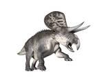 Zuniceratops Dinosaur, White Background Posters