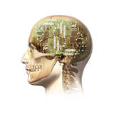 Male Human Head with Skull and Artificial Electronic Circuit Brain Posters