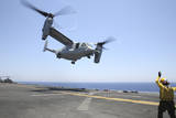Airman Directs the Take-Off an MV-22 Osprey Photographic Print