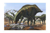 A Herd of Shantungosaurus Dinosaurs Scavenging for Food Art Print