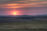 Setting Sun over Harvested Field, Gleichen, Alberta, Canada Photographic Print