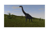 Brachiosaurus Grazing in a Grassy Field Prints