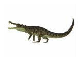 Kaprosuchus Is an Extinct Genus of Crocodile Plakaty