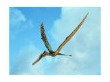 Zhenyuanopterus, a Genus of Pterosaur from the Cretaceous Period Art