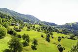 Green Meadow, Drazgoska, Northern Slovenia, Slovenia, Europe Photographic Print by Karl Thomas