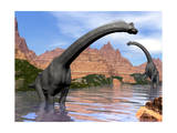 Two Brachiosaurus Dinosaurs in Water Next to Red Rock Mountains Prints