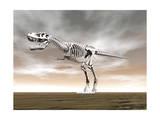 Tyrannosaurus Rex Skeleton Print