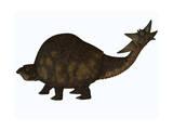 A Large Glyptodont from the Pleistocene Epoch Print