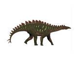 Miragaia Is a Genus of Stegosaurid Dinosaur Posters