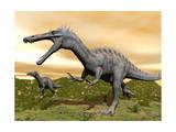 Two Suchomimus Dinosaurs Running Print