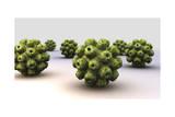 Conceptual Image of Polyomavirus Posters