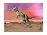 Aucasaurus Dinosaur Roaring in the Desert by Sunset Poster