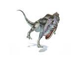 Majungasaurus Dinosaur on White Background Prints
