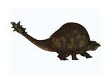 A Large Glyptodont from the Pleistocene Epoch Prints
