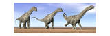 Three Argentinosaurus Dinosaurs Standing in the Desert Poster