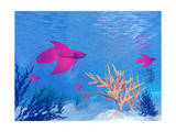 Several Red Betta Fish Swimming Underwater Posters