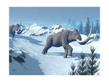 Two Large Mammoths Walking Slowly on the Snowy Mountain Posters