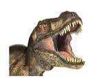 Close-Up of Tyrannosaurus Rex Dinosaur with Mouth Open Prints