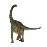Spinophorosaurus Is a Sauropod Dinosaur from the Jurassic Period Prints