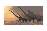 A Family of Mamenchisaurus Dinosaurs Art
