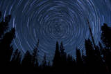 Star Trails and a Meteor Above Pine Trees in Lassen Volcanic National Park Photographic Print