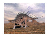 Kentrosaurus Dinosaur Walking in the Desert Posters