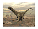 Large Argentinosaurus Dinosaur Walking on Rocky Terrain Posters