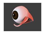 Conceptual Image of Human Eye Anatomy Print