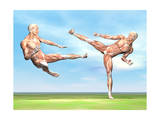 Two Male Musculatures Fighting Martial Arts Prints