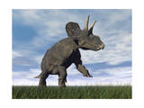 Nedoceratops Dinosaur Grazing in Grassy Field Posters