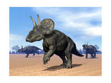 Three Nedoceratops in the Desert by Daylight Prints