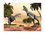Two Aucasaurus Dinosaurs Fighting in Desert Art