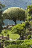 Terrace with Giant Topiary, Villa Barbonella, Lake Como, Lombardy, Italy, Europe Photographic Print by James Emmerson
