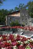 Floral Display at Bardolino, Lake Garda, Italian Lakes, Lombardy, Italy, Europe Photographic Print by James Emmerson