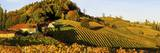 Suedsteirische Weinstrasse, Southern Styria Wine Route in Autumn, Styria, Austria, Europe Photographic Print by Karl Thomas