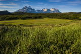 Green Grass, Torres Del Paine National Park, Patagonia, Chile, South America Photographic Print by Michael Runkel