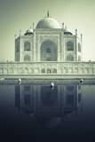 Taj Mahal, UNESCO World Heritage Site, Agra, Uttar Pradesh, India, Asia Photographic Print by Douglas Pearson