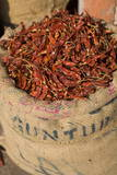Spices, Jaipur, Rajasthan, India, Asia Photographic Print by Doug Pearson